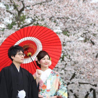 松本市アルプス公園 春桜